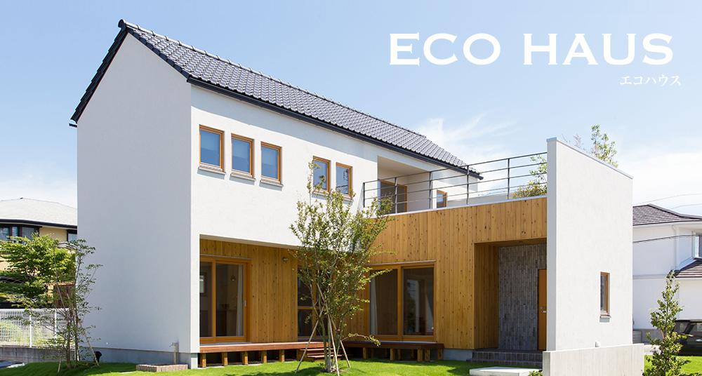 自然の光と風が入る家